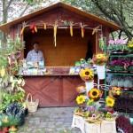 8. Schenkenberger Herbstmarkt 2014